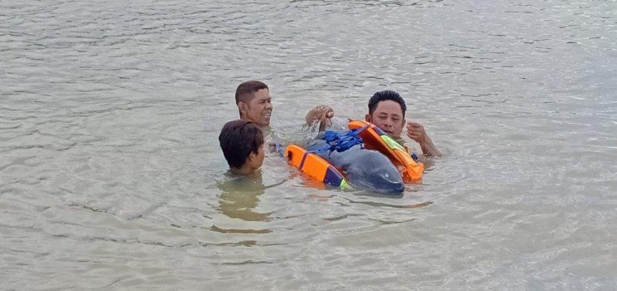 Upaya Penyelamatan