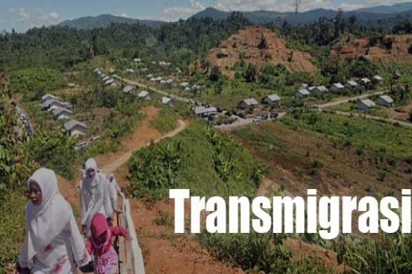 Ilustrasi Transmigrasi