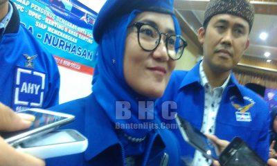Ketua DPD Demokrat Banten