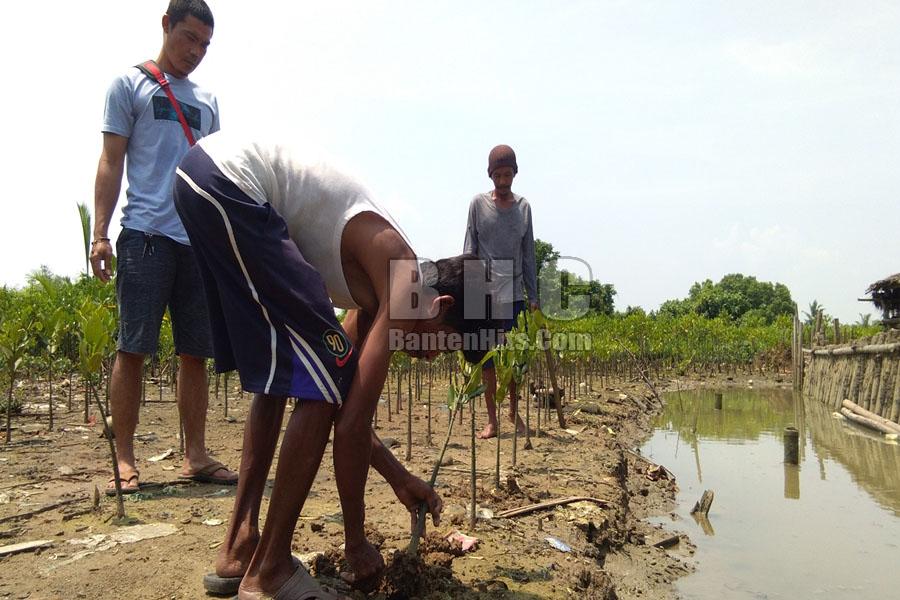 Kampung Mangrove Wisata Edukasi di Banten
