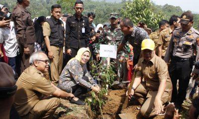Kampung Durian di Banten