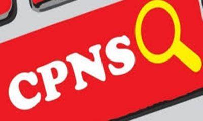 Ilustrasi CPNS