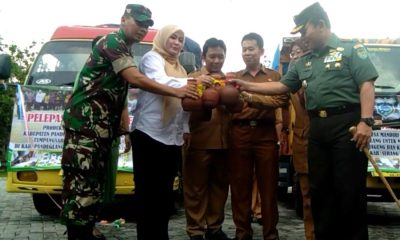 Kabupaten Pandeglang Suplai Benih Kedelai