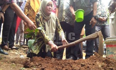 Bupati Pandeglang Irna Narulita Gerakan Panen Cabai