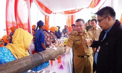 Kepala DPMD Lebak Dampingi Direktur Pemberdayaan Desa