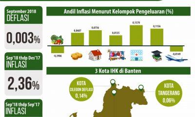 Grafis Inflasi dan akibatnya terhadap kelompok pengeluaran