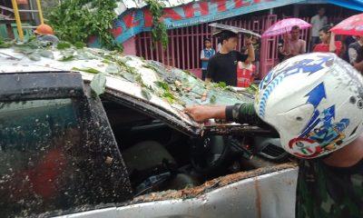 Daihatsu Xenia tertimpa pohon tumbang di cijoro lebak