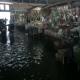 Kondisi Pasar Blok F saat terendam banjir