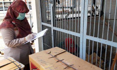 BKP Kelas II Cilegon Gagalkan Penyelundupan Ribuan Burung Asal Lampung