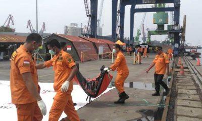 Hari ke-12 Operasi SAR Lion Air JT-610, 196 Kantong Mayat Dievakuasi