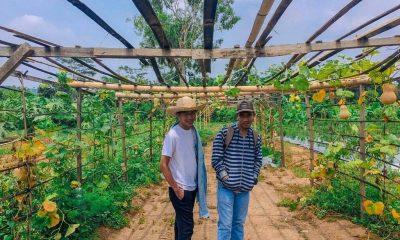 Taman Agro Edupark milik SMKN 2 Rangkasbitung