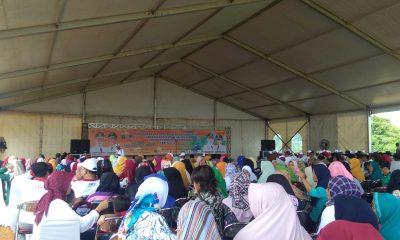 Hari Menanam Pohon Indonesia atau HMPI tingkat Provinsi Banten