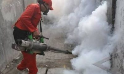 10 Warga Pamulang Timur Terjangkit DBD, Jumantik dan Fogging Diturunkan Kelurahan