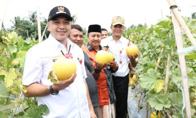 Zaki Panen Jagung dan Melon Kuning di Teluk Naga