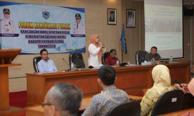 Irna Narulita Pimpin Rapat Forum Konsultasi Publik RKPD Pandeglang 2020,