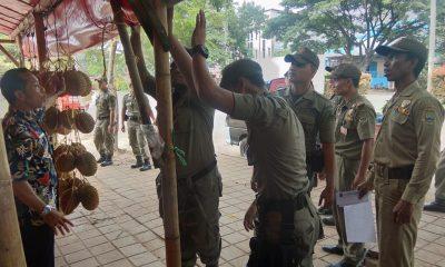Satpol PP Kota Cilegon Tertibkan Pedagang Durian di JLS