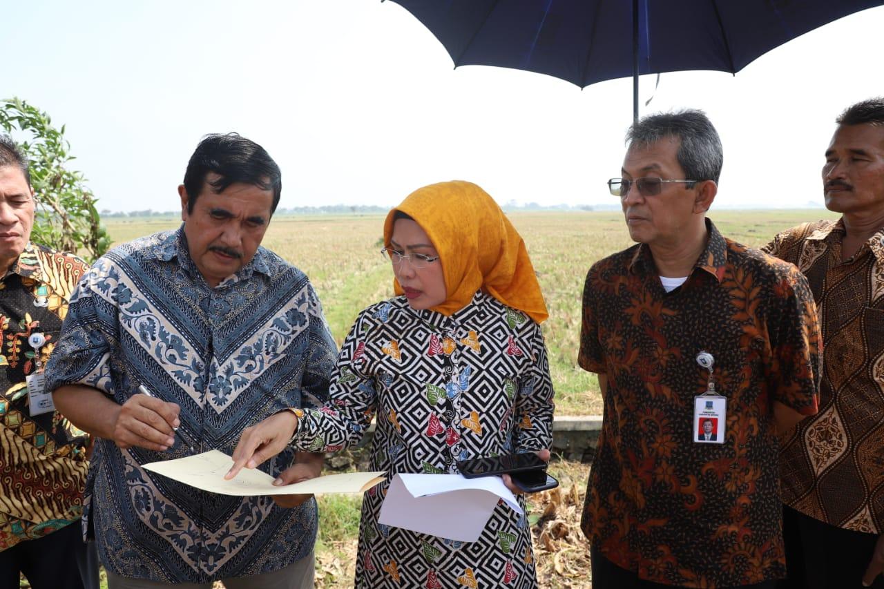 Bupati Serang Ratu Tatu Chasanah Siapkan Pusat Kajian Kitab Kuning di Islamic Centre Syech Nawawi Albantani