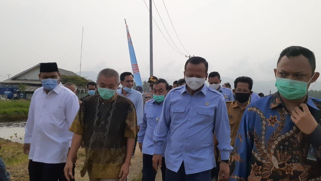 Menteri Edhy Prabowo Kunjungi Pandeglang; Tangkap dan Santap Mentah-mentah Udang Vaname