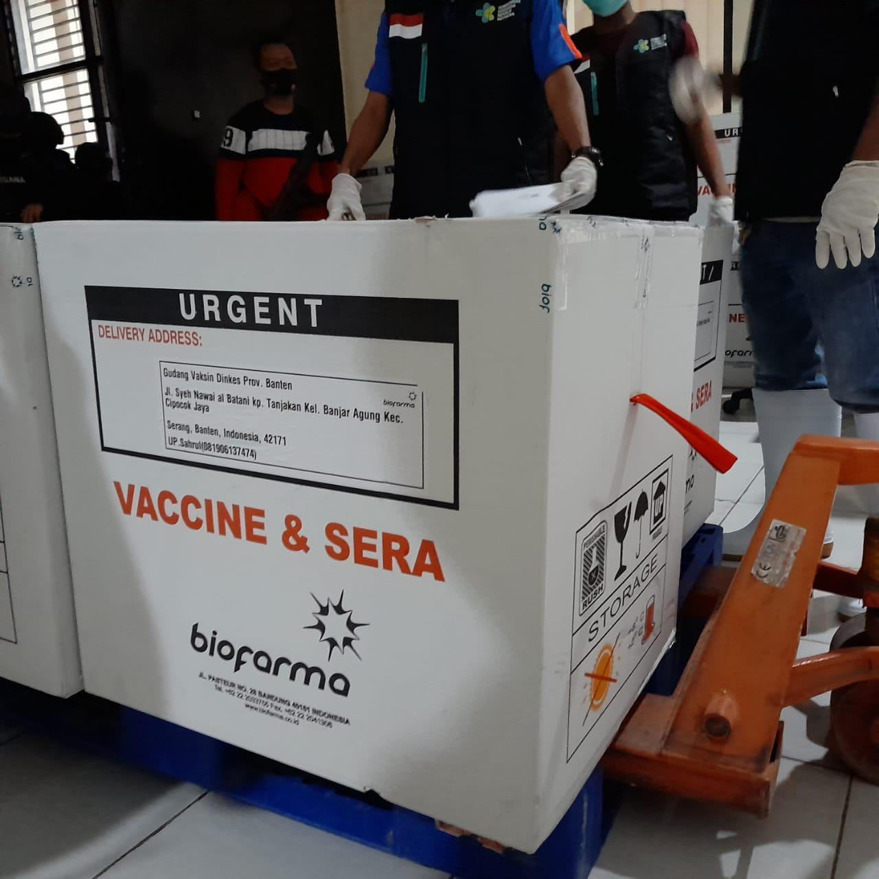 Pemerintah Diminta Jujur soal Vaksin Sinovac, Ada Apa?